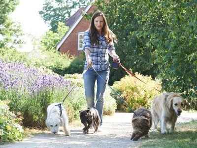 Pet Sitter Walking Dogs