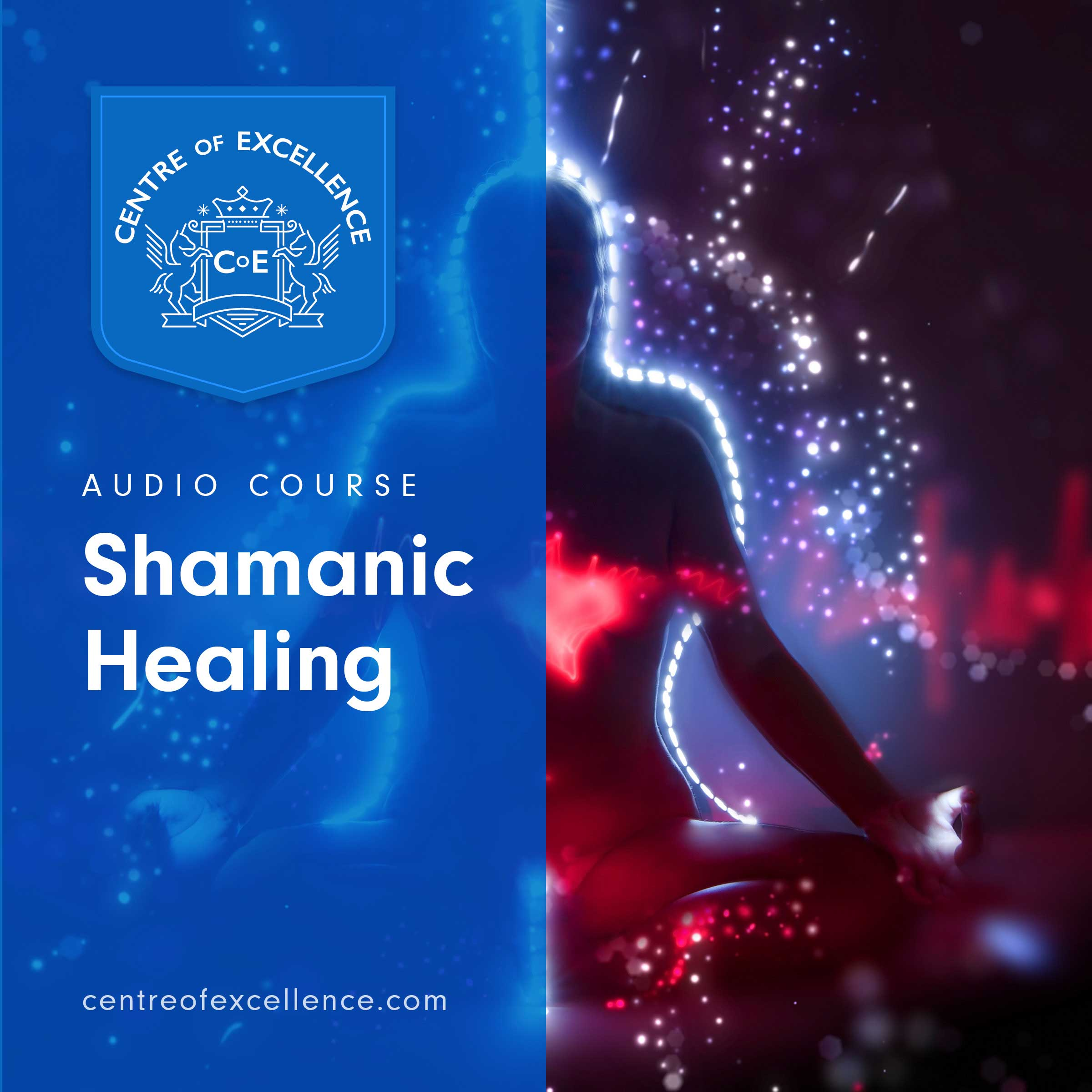 Shamanic Healing Audiobook Cover