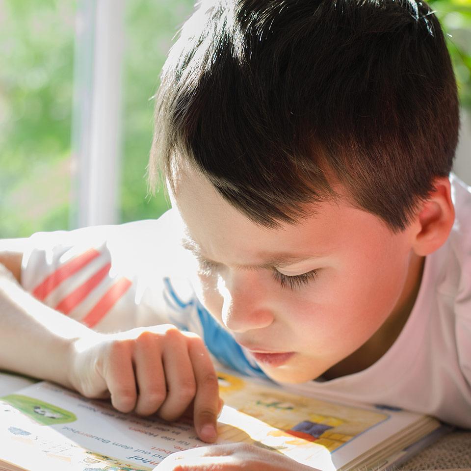 Understanding Dyslexia Diploma Course