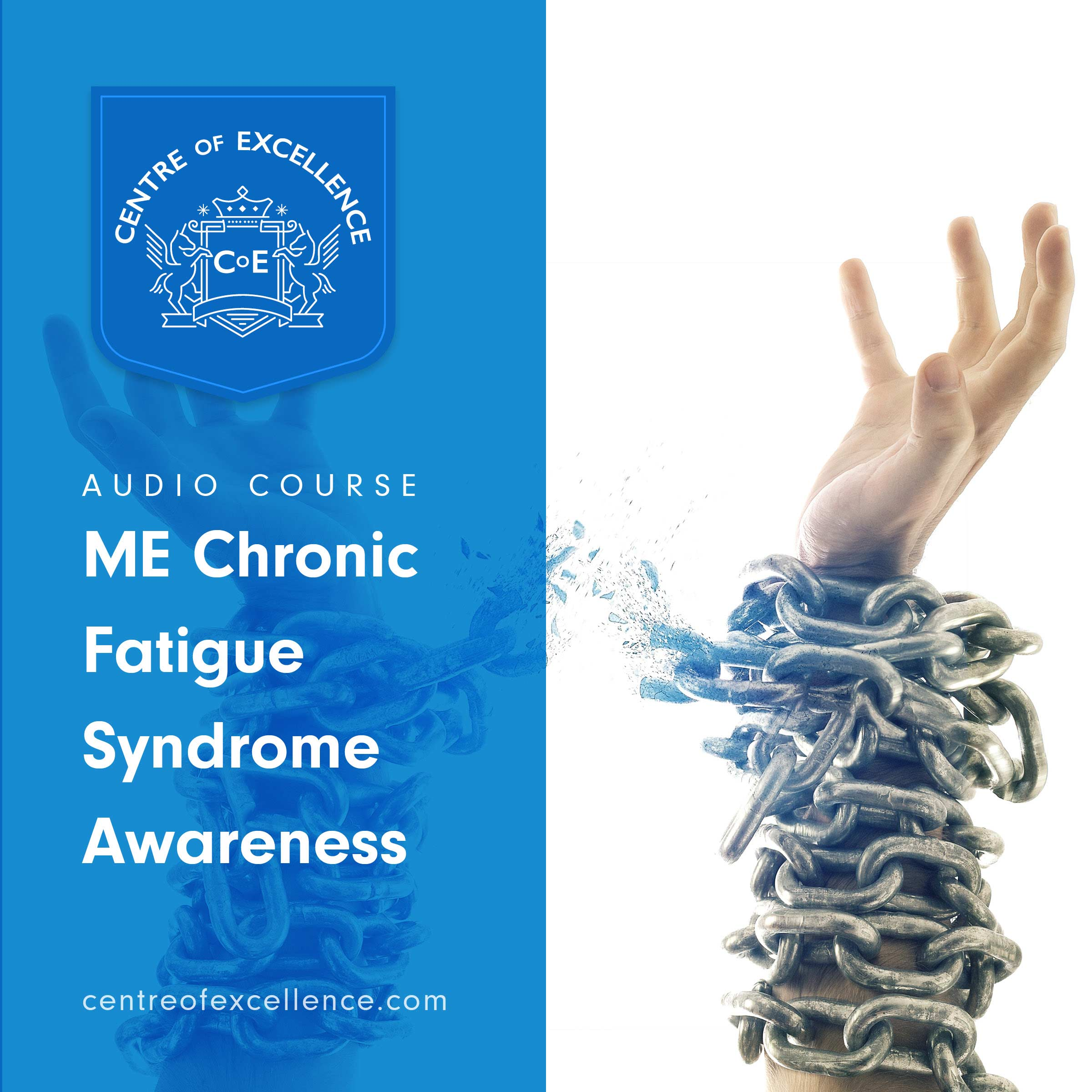 ME/Chronic Fatigue Syndrome Awareness Audiobook Cover