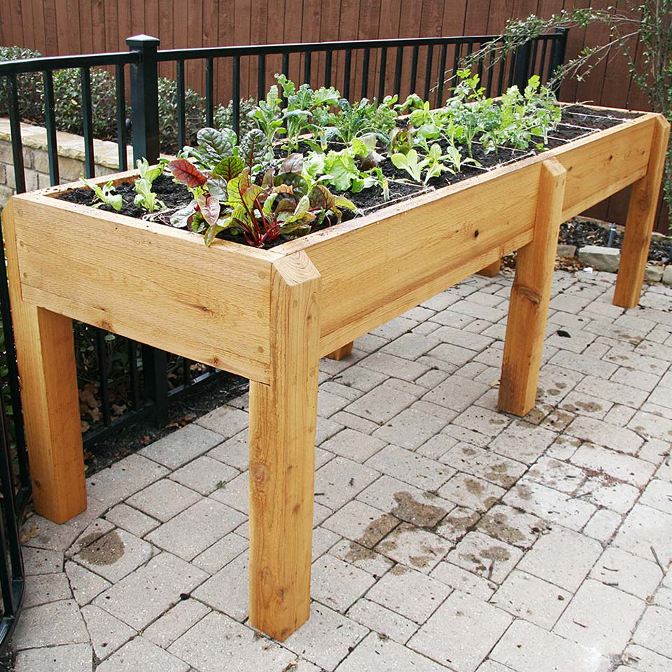 Raised flower bed table with organic plants growing inside it
