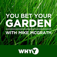 Gardening Podcast - You Bet Your Garden