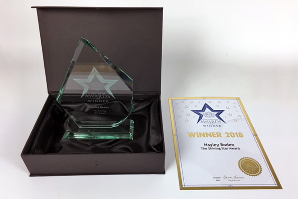 Centre of Excellence Awards 2018 Winner Trophy & Certificate