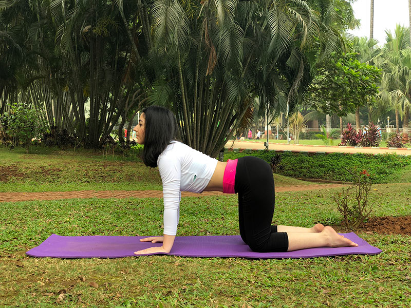 ] for Back Pain - Cow Pose