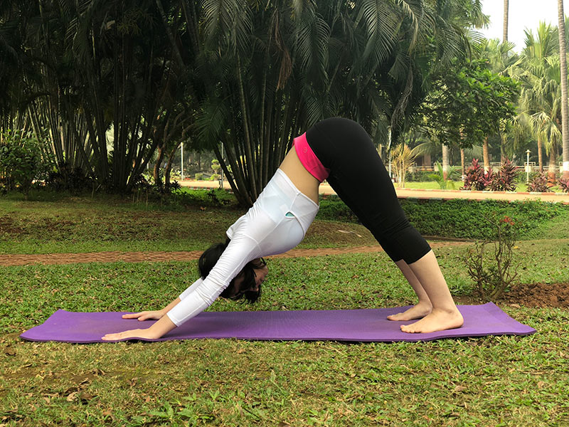 ] for Back Pain - Downward Facing Dog Pose