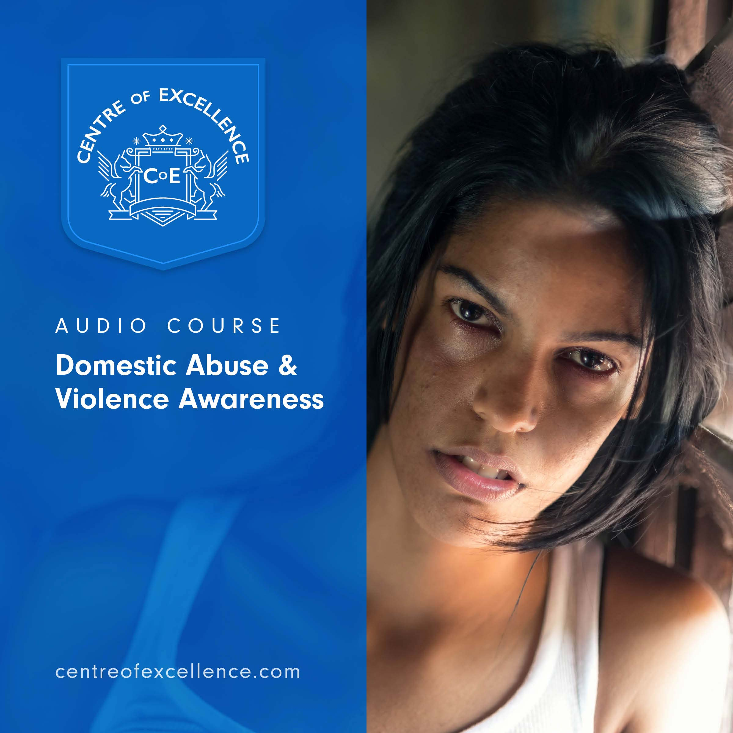 Domestic Abuse & Violence Awareness Audio Course