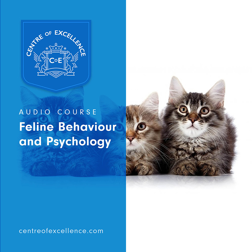 Feline Behaviour and Psychology Audio Course