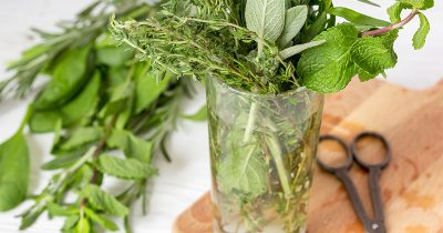 Herb cuttings in a glass of water, on top of a chopping board, next to a pair of scissors