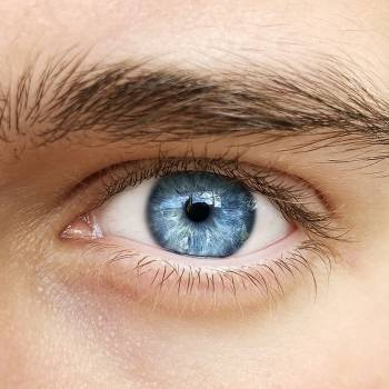 Eye Movement Desensitisation and Reprocessing TherapyDiploma Course