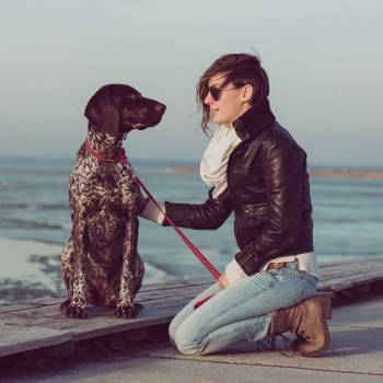 Canine Communication Diploma Course