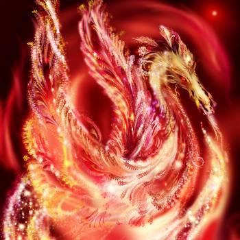 Dragons and Dragon Energy Diploma Course