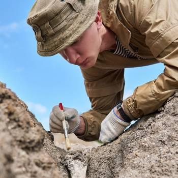 Palaeontology Diploma Course