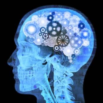 Neuropsychology Diploma Course