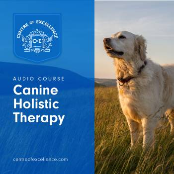 Canine Holistic Therapy Audio Course