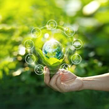 Ecology Diploma Course