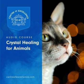 Crystal Healing for Animals Audio Course