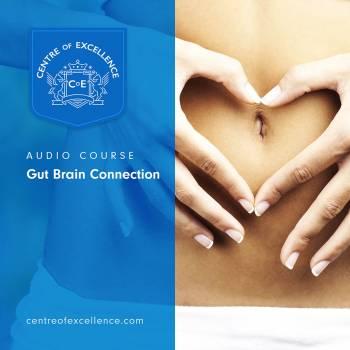 Gut Brain Connection Audio Course
