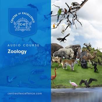 Zoology Audio Course