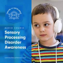 Sensory Processing Disorder Awareness Audio Course