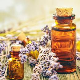 Bach Flower Remedies Diploma Course