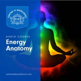 Energy Anatomy Audio Course