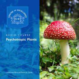 Psychotropic Plants Audio Course