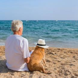 Pet Bereavement Counsellor Diploma Course