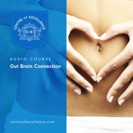 Gut Brain Connection Audio Course