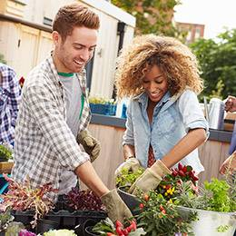 Urban Food Gardening Diploma Course