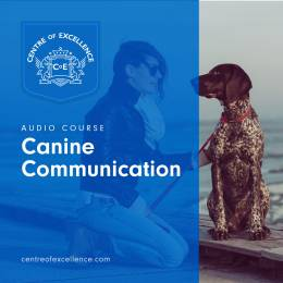 Canine Communication Audio Course