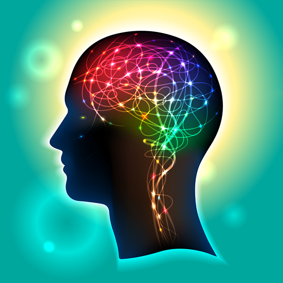 Profile of a human head with a colourful symbol of neurons in the brain