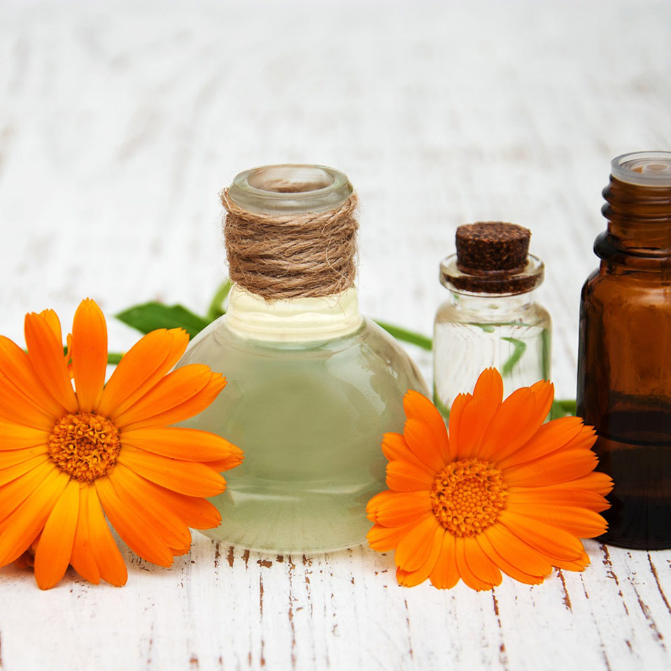 essential-oils-business-course-2