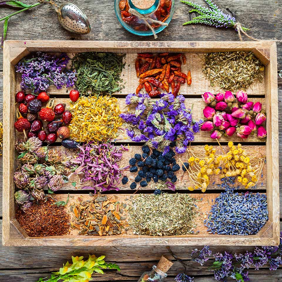 Healing herbs in wooden box on table