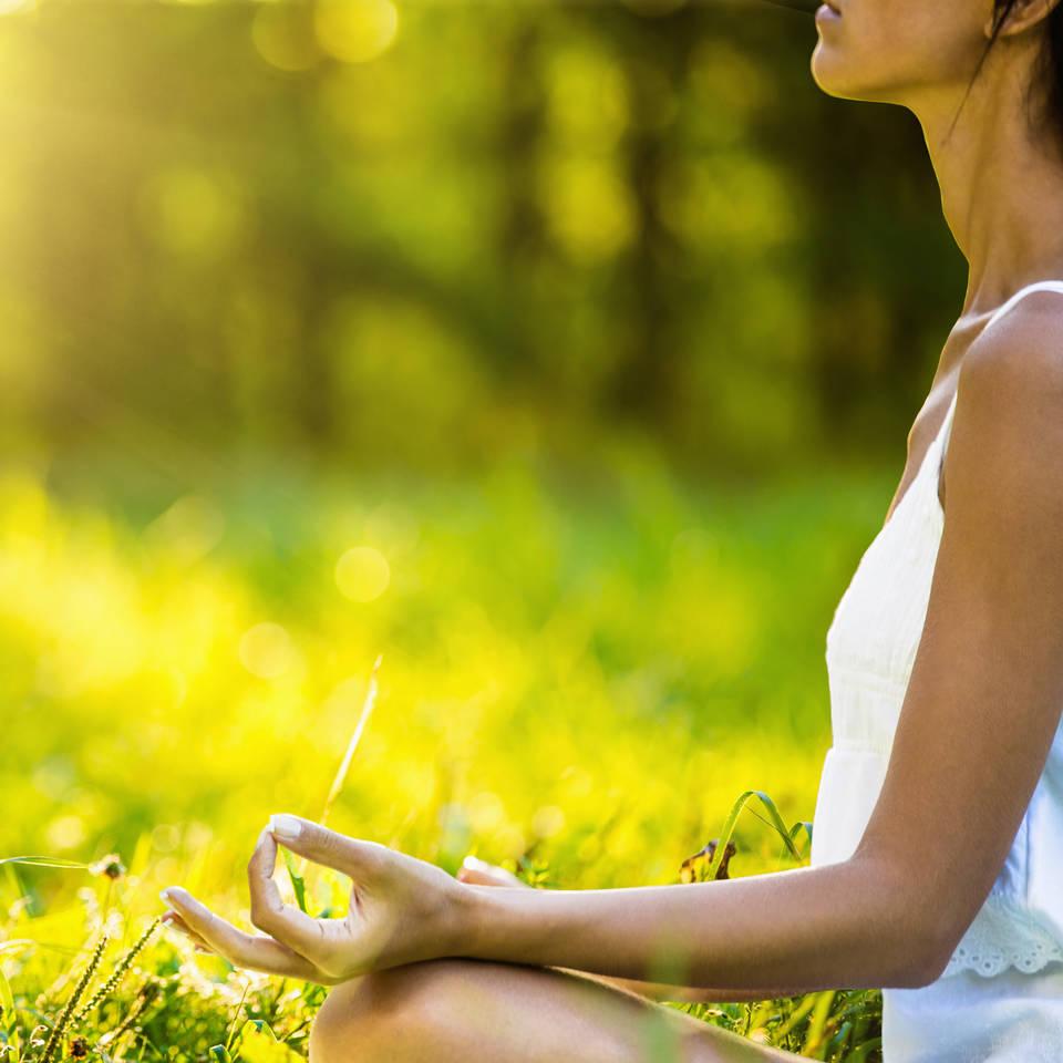 Mindfulness Based CBT Diploma