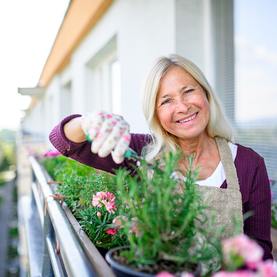 Woman cutting herbs on balcony in summer