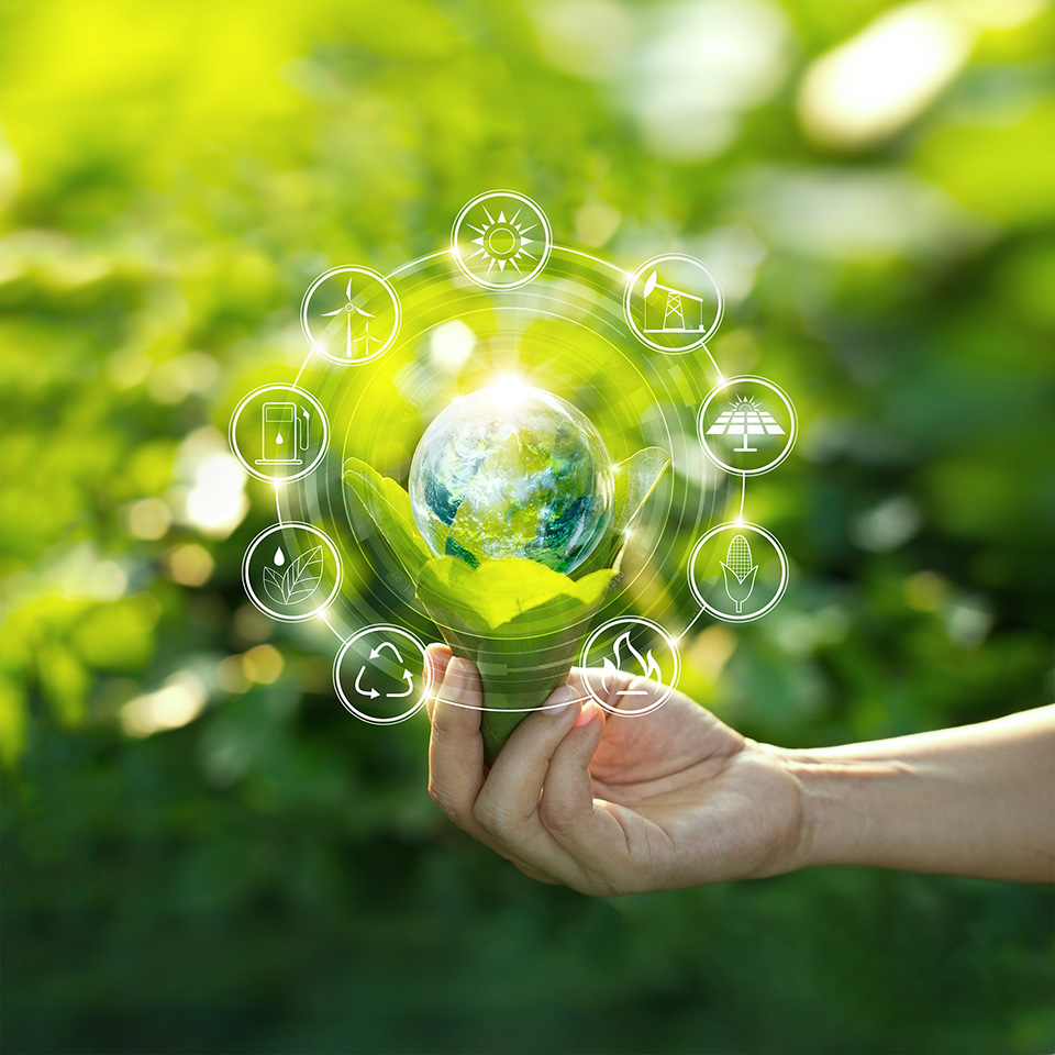 Hand holding a light bulb, surrounded by icons of energy sources, in front of a green, nature background