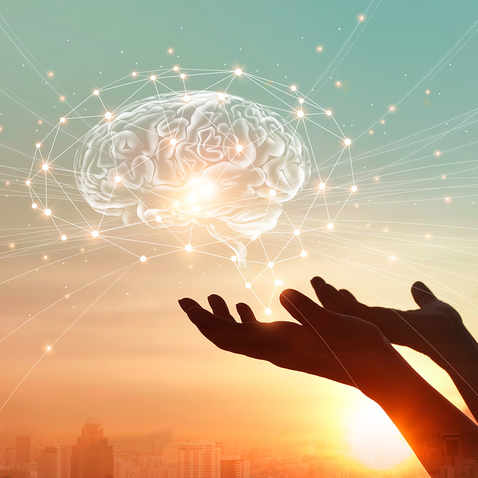 Hands touching brain with network connections on a background of a city at sunset