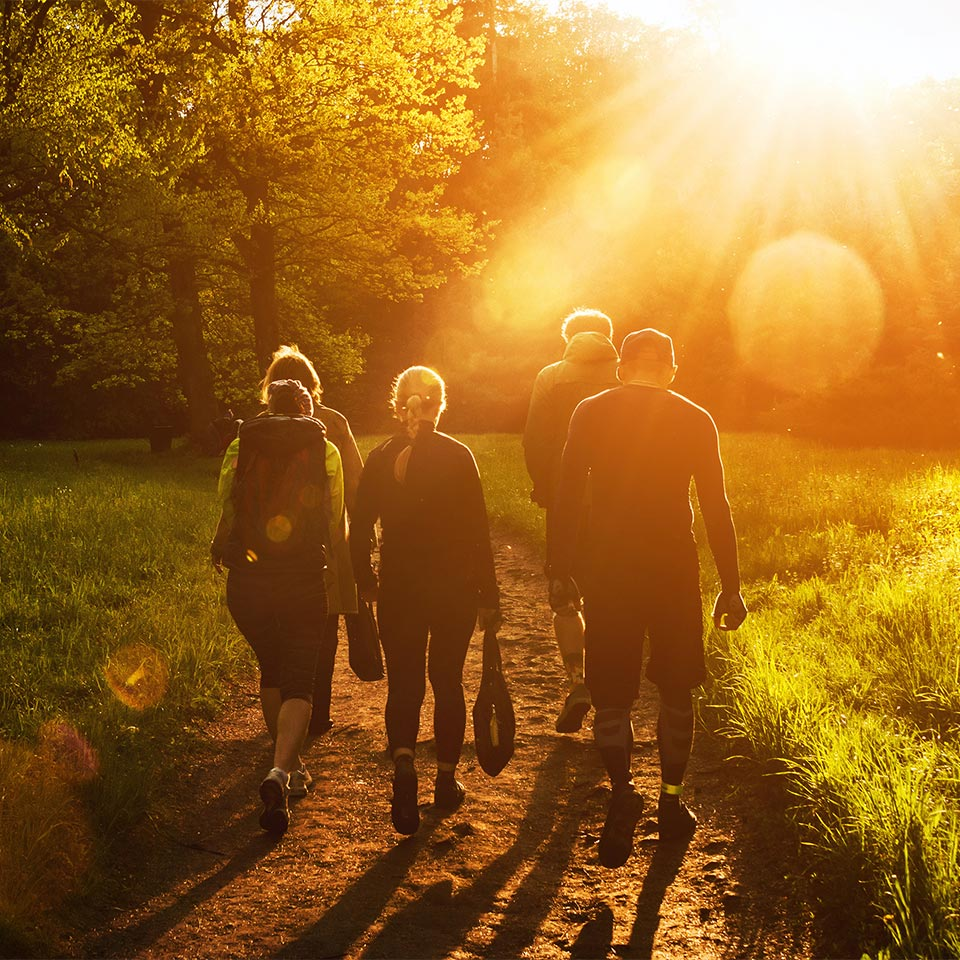 Group of people walking through a forest at sunset.