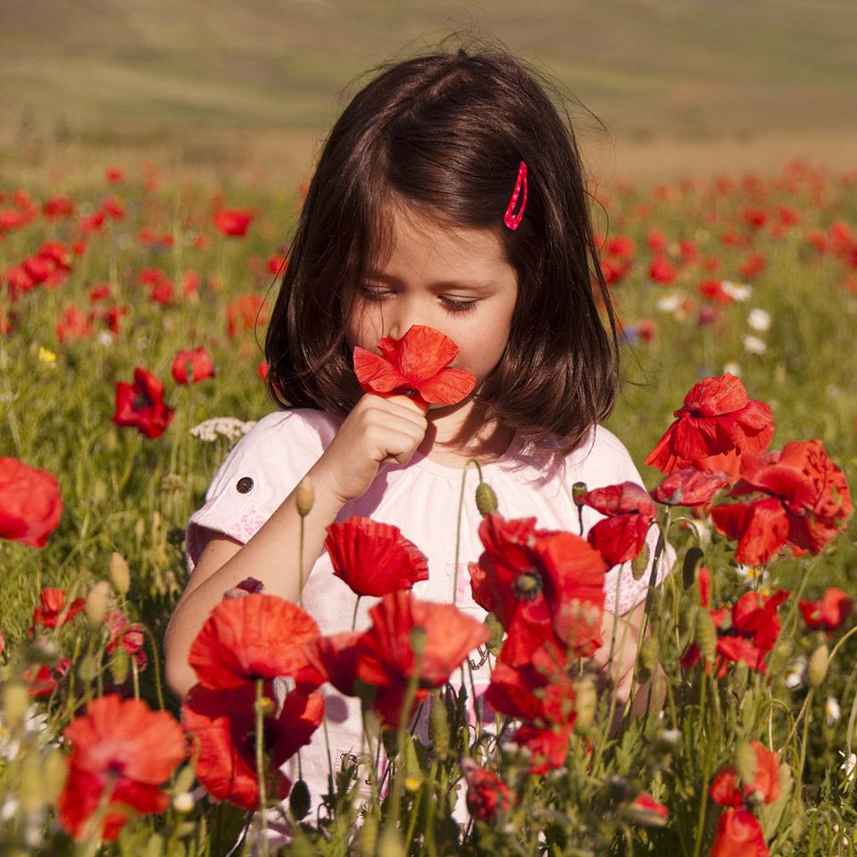 Girl sniffing flowers in a poppy field