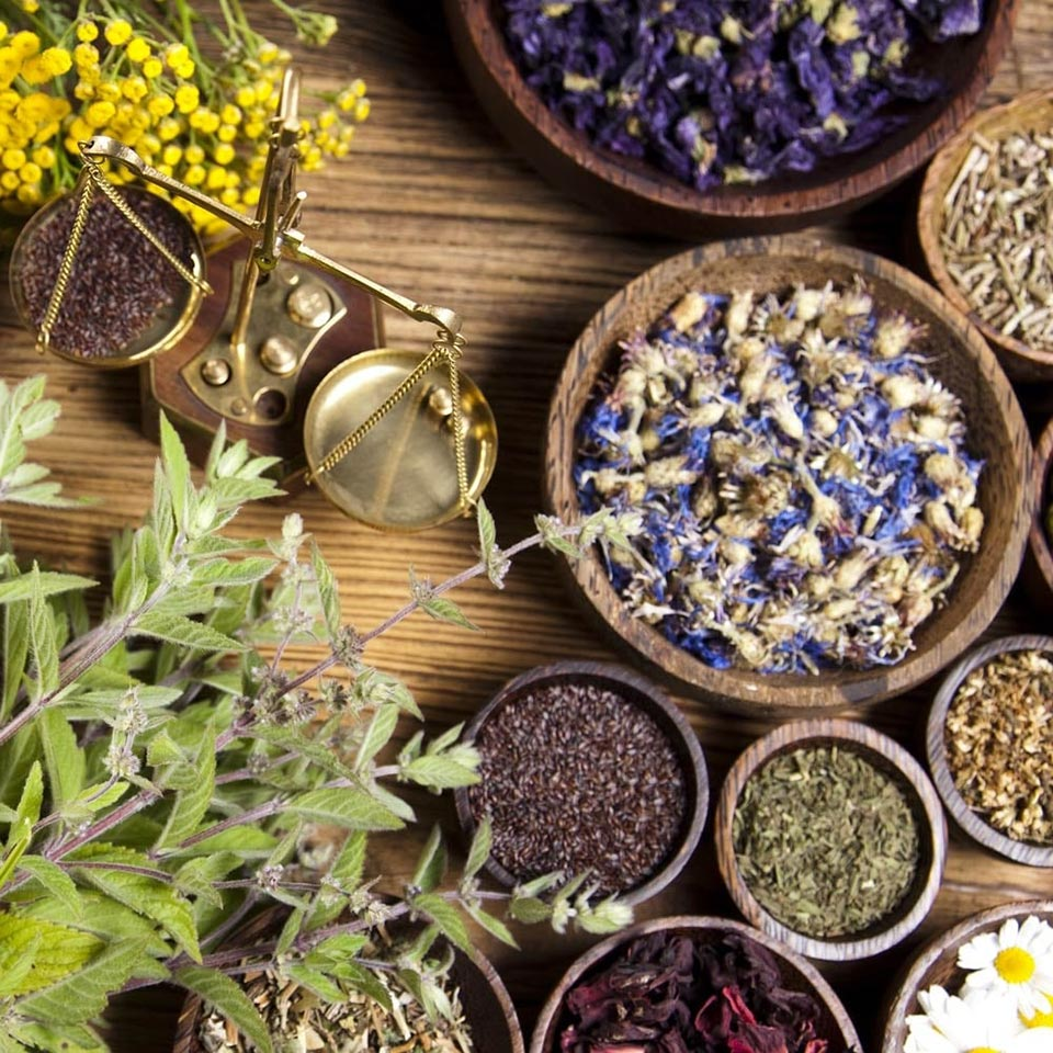 Advanced Master Herbalist Diploma Course