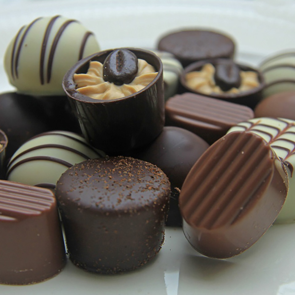 Chocolate Making Business Diploma Course