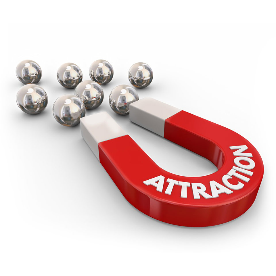 Law of Attraction Diploma Course